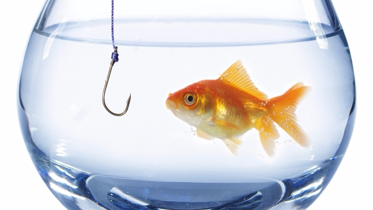goldfish in a bowl with a hook
